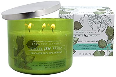 T & H Eucalyptus Spearmint Aromatherapy Candle Stress Relief Soy Wax Essential Oils 3-Wick Candle 80 Hour Burn 16 oz Mild Natural Scented Long Lasting Candles