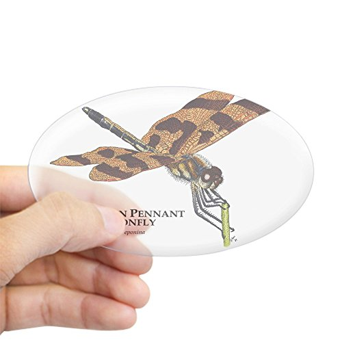 CafePress - Halloween Pennant Dragonfly Sticker (Oval) - Oval Bumper Sticker, Euro Oval Car Decal