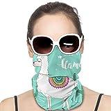 Love Animal Cute Funny Llama Or Alpaca Face Mask UV Sun Mask Dust Wind Neck Gaiter Magic Bandana