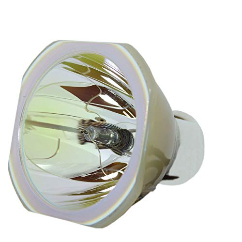LYTIO Economy for Dukane 456-239 Projector Lamp (Bulb Only) 456 239 ()