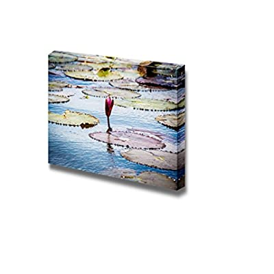 Beautiful Scenery Landscape Red Lotus in Swamp of Thailand Vintage Style - Canvas Art Wall Art - 16