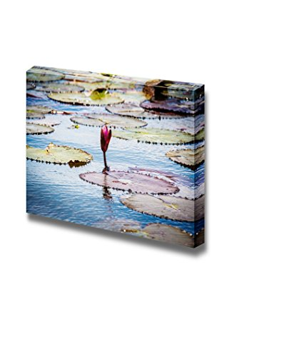Beautiful Scenery Landscape Red Lotus in Swamp of Thailand Vintage Style Wall Decor ation