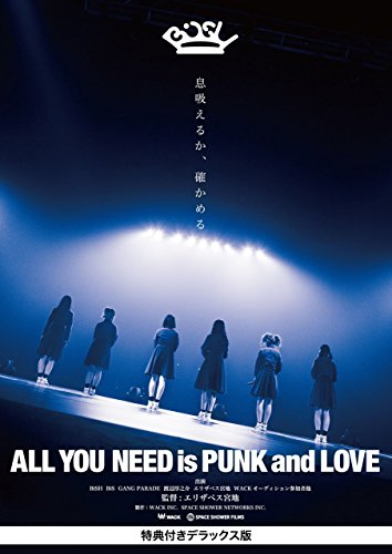 ALL YOU NEED is PUNK and LOVE [特典付きデラックス版]の商品画像