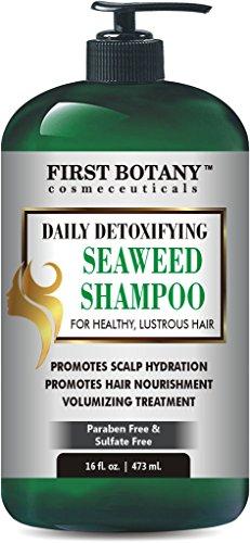 Seaweed Shampoo 16 fl oz, Daily Anti Hair loss, Hydrating, Detoxifying, Volumizing, Hair Growth Promoting Shampoo For Men and Women (Detoxifying Seaweed)