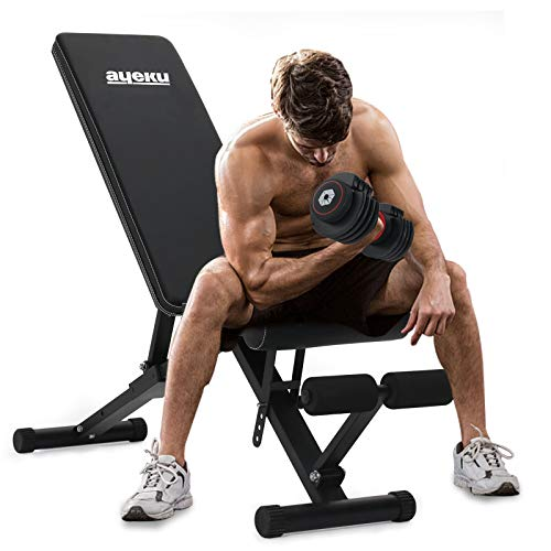 AyeKu Adjustable Weight Bench, Foldable Strength Training Bench for Full Body Workout, Exercise Bench for Home Gym