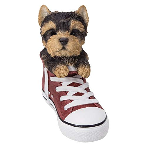(Pacific Giftware PT All Star Animal Yorkie Puppy Dog in The Shoe Decorative Resin Figurine )