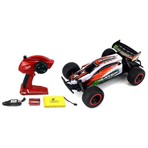 Lightweight Body Shell 2.4 GHz PRO Remote Control Slayer Buggy Car with Spring Shock Absorbers (Colors May - Tint F1