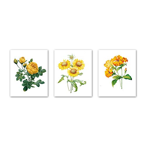 Modern Watercolors Flower Series Wall Art Prints Yellow Series Rose Sunflower Poster and Print Canvas Painting Wall Prints for Bed Room Living Room Home Kitchen Home Wall Art Decor (Set of 3) 8x10 i (Print Sunflower)