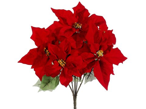 19'' Water-Resistant Poinsettia Bush x5 Red (Pack of 12) by Silk Decor