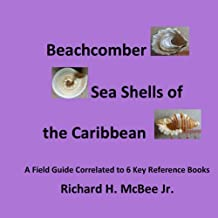Beachcomber Seashells of the Caribbean: A Field Guide Correlated to 6 Key Reference Books