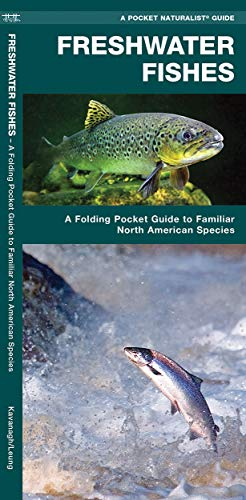 Freshwater Fishes: A Folding Pocket Guide to Familiar North American Species (Wildlife and Nature Identification) (Arabic Edition) (Fish Washington)