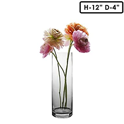 Amazon.com: CYS Gl Cylinder Vase. H-12, Open D-4