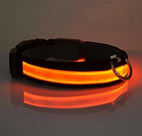 Da.Wa LED Golllar de Perro LED Luz del Collar para los Perros Golgante para Perros