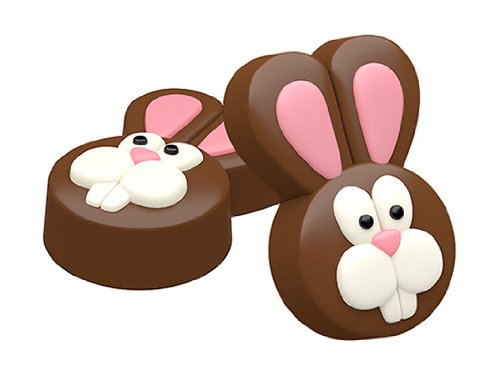 SpinningLeaf Easter Bunny Sandwich Cookie Mold