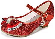 YWY Girls Mary Jane Glitter Shoes Low Heel Princess Flower Wedding Party Dress Pump Shoes for Kids Toddler
