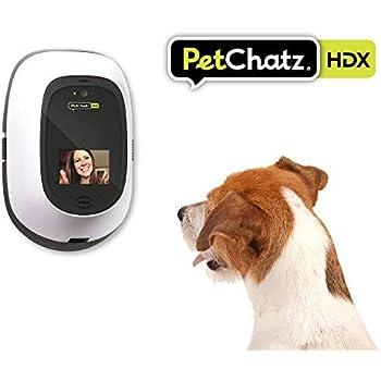 6023 Flashing LED Dog Cat Pet Pendants Necklace Pet Collar Dog Accessories Color