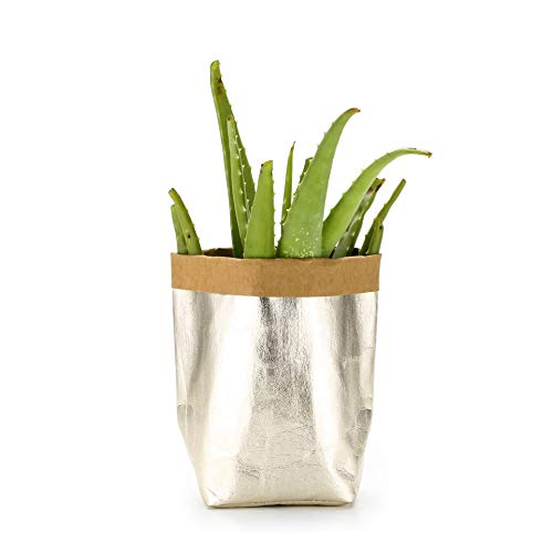 (Oubest Washable Kraft Paper Bag Ideal for Gift Plants/Displaying Houseplants Housewarming Decorative Container for Home Storage of ECO-Friendly Material Wear-Resistant Reusable (Light Gold))