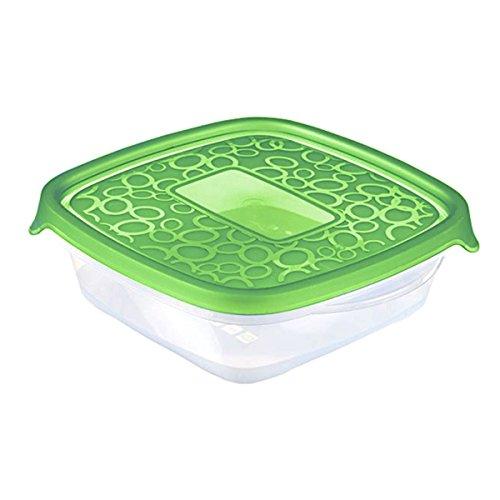 CURVER 2045183 Tomar Caja de almacenaje de plástico Transparente/0 ...