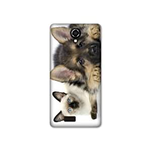Amazon.com: Case Wiko Harry animaux 2 - Chien vs Chat B: OBS ...