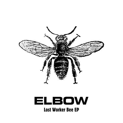 Lost Worker Bee - EP