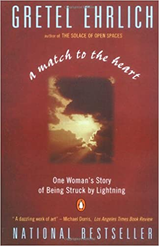 A match to the heart one womans story of being struck by lightning a match to the heart one womans story of being struck by lightning gretel ehrlich 9780140179378 amazon books fandeluxe Image collections