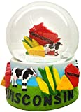 CityDreamShop State of Wisconsin Large 65mm Souvenir Collectible Snow Globe