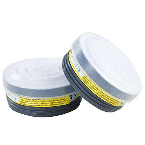 (Holulo ST-M70-3 Safety Respirator (1 Pair LDY7 filter Cartridges))