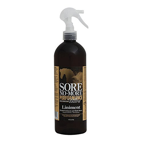 Equilite Sore No More Performance Ultra Liniment 16 oz