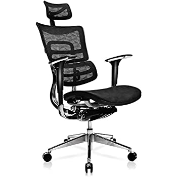 Genial TomCare Office Chair Ergonomic Mesh Office Chair With Adjustable Lumbar  Support, Backrest, Headrest,