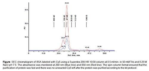 BioVision EZLabel Protein Cy5 Labeling Kit, K839-5