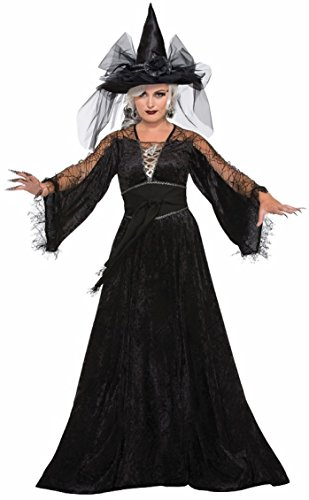 Forum Women's Spellcaster Wizard Costume, Multi, One Size (Oz Witch Costume)