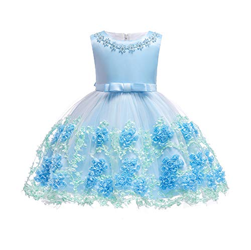 Dhiuow Baby Girls Flower Dress Wedding Party Toddler Dres Birthday Special Occasion Girls Dress Blue 18-24 Months ()