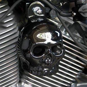 (Harley Gloss Black Powder Coated Skull Horn Cover)