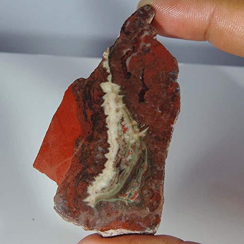 (GEMSCREATIONS Snake Skin,Jasper, 189.85Cts. Slab,Rock,Fossil,Slab,GEM, lapiadary, Rock)