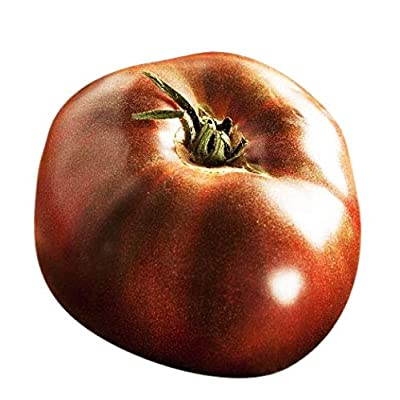 Organic Black Brandywine Heirloom Tomato Seeds - Large Tomato - One of The Most Delicious Tomatoes for Home Growing, Non GMO - Neonicotinoid-Free. : Garden & Outdoor
