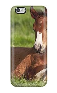 Iphone 6 Plus Case Cover Skin : Premium High Quality Horse Case