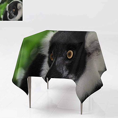 (AFGG Anti-Fading Tablecloths,Black & White vari,Dinner Picnic Table Cloth Home Decoration,70x70 Inch)