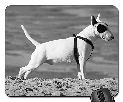 (Mouse Pads - Dog Animal Pitbull Terrier Terrier Tail Legs Ears)