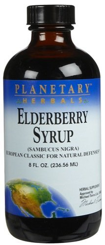 Planetary Herbals Elderberry, Syrup 8 Fl Oz (Pack of 2) by Planetary Formulas
