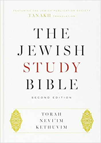 Workbook bible studies for kids worksheets : The Jewish Study Bible: Second Edition: Adele Berlin, Marc Zvi ...