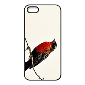 Lovely Bird Hight Quality Plastic Case for Iphone 5s