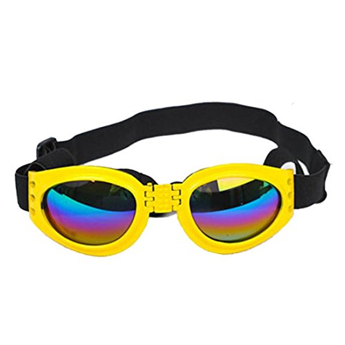 Baishitop Water-Proof Multi-Color Pet Sunglasses Goggles 13.22 lbs above Dog Sunglasses - Aviator Goggles Buy