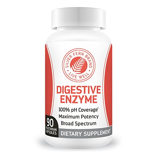 Silver Fern Brand Ultimate Digestive Enzyme Supplement – 1 Bottle – High Potency, Multi Enzyme – Digestive Comfort & Food Tolerance – Hemicullulase, Peptidase, Maltase, More For Sale