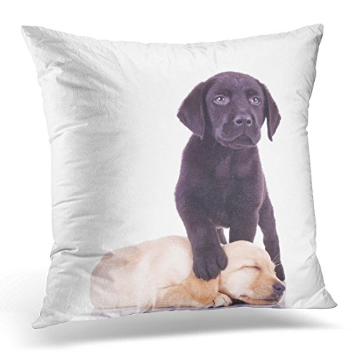 Cover Yellow Puppy Little Black Labrador Standing with Paw on Sleeping Puppy's Head White Lab Decorative Pillow Case Home Decor Pillowcase 18
