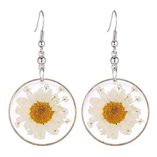 (FM FM42 Multi-Colored Pressed White Daisy & White Queen Anne's Lace Flowers 1.14