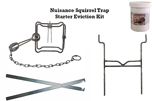 Nuisance Squirrel Starter Trap Eviction Kit