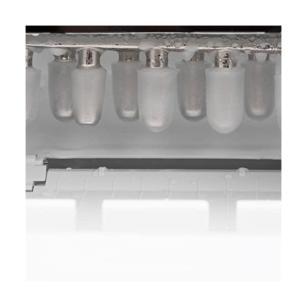 Klarstein Mr. Silver-Frost - Macchina per Cubetti di Ghiaccio, 15 kg/24 h, 150 Watt, 3 Dimensioni Cubetti, Preparazione… 5 spesavip