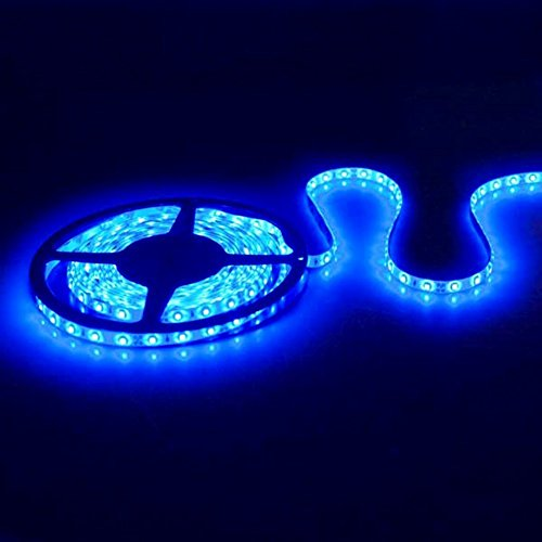 Blue Led Accent Lighting