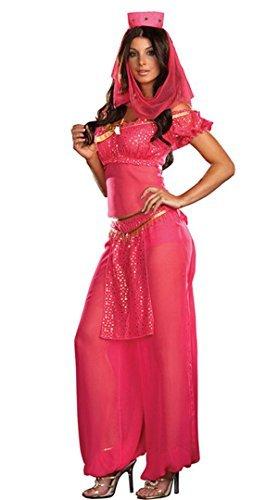 Pink Princess Jasmine Belly Dancer Genie Fancy Dress Costume