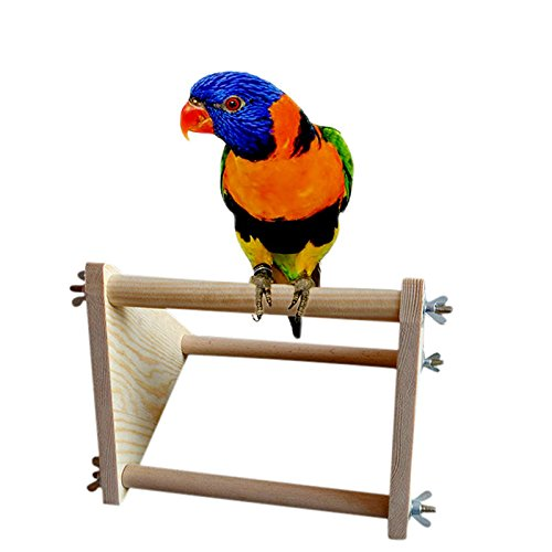 Parrot Bird Perch Stand Play Fun Toys Gym Wooden Activity Table Top Playstand Fun Perch